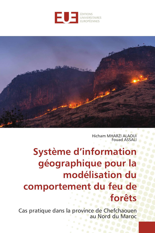 Système d'information géographique pour la modélisation du comportement du feu de forêts