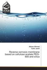 Reverse osmosis membrane based on cellulose acetate PEG-600 and silica