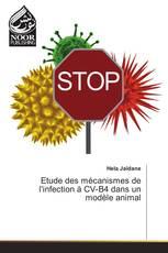 Etude des mécanismes de l'infection à CV-B4 dans un modèle animal