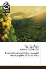 Exploration du potentiel tinctorial de sous-produits industriels