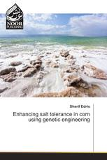 Enhancing salt tolerance in corn using genetic engineering