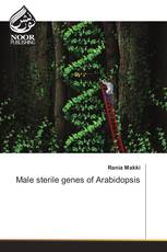 Male sterile genes of Arabidopsis