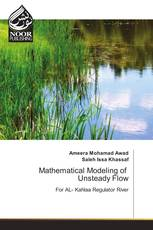 Mathematical Modeling of Unsteady Flow