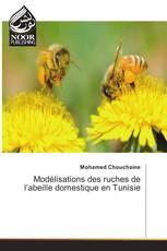 Modélisations des ruches de l'abeille domestique en Tunisie