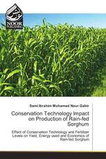Conservation Technology Impact on Production of Rain-fed Sorghum
