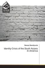 Identity Crisis of the South Asians In America