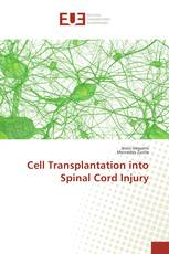 Cell Transplantation into Spinal Cord Injury