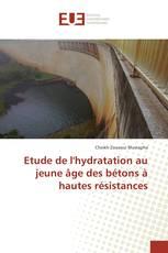 Etude de l'hydratation au jeune âge des bétons à hautes résistances