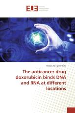 The anticancer drug doxorubicin binds DNA and RNA at different locations