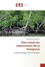 Etat actuel du reboisement de la mangrove
