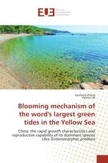 Blooming mechanism of the word's largest green tides in the Yellow Sea