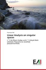 Linear Analysis on singular spaces