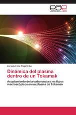 Dinámica del plasma dentro de un Tokamak