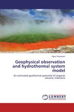 Geophysical observation and hydrothermal system model