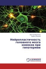Нейропластичность головного мозга хомяков при гипотермии