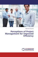 Perceptions of Project Management for Improved Efficiency