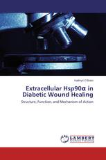 Extracellular Hsp90α in Diabetic Wound Healing