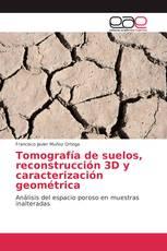 Tomografía de suelos, reconstrucción 3D y caracterización geométrica