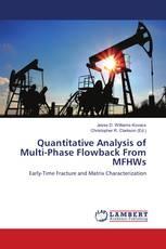 Quantitative Analysis of Multi-Phase Flowback From MFHWs