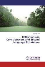 Reflections on Consciousness and Second Language Acquisition