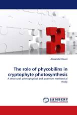 The role of phycobilins in cryptophyte photosynthesis