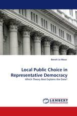 Local Public Choice in Representative Democracy