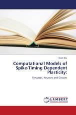 Computational Models of Spike-Timing Dependent Plasticity: