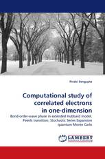 Computational study of correlated electrons in one-dimension