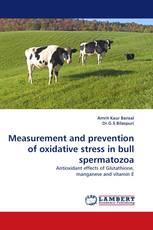 Measurement and prevention of oxidative stress in bull spermatozoa