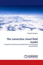 The convective cloud field model