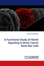 A Functional Study of Notch Signaling in Brain Cancer Stem-like Cells