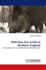 Wild Boar Sus scrofa in Southern England