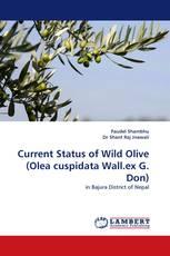 Current Status of Wild Olive (Olea cuspidata Wall.ex G. Don)
