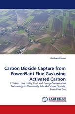 Carbon Dioxide Capture from PowerPlant Flue Gas using Activated Carbon
