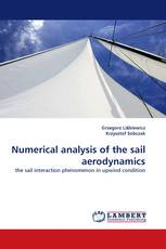 Numerical analysis of the sail aerodynamics