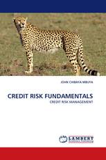 CREDIT RISK FUNDAMENTALS