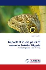Important insect pests of onion in Sokoto, Nigeria