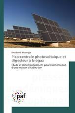Pico-centrale photovoltaïque et digesteur à biogaz