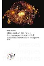 Modélisation des fuites électromagnétiques en H. F
