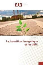 La transition énergétique et les défis
