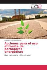 Acciones para el uso eficiente de portadores energèticos