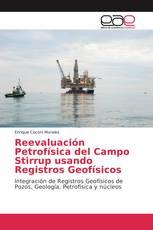 Reevaluación Petrofísica del Campo Stirrup usando Registros Geofísicos