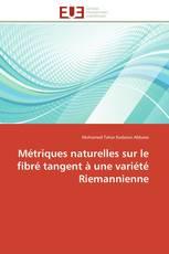 Métriques naturelles sur le fibré tangent à une variété Riemannienne