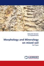 Morphology and Mineralogy on mixed soil