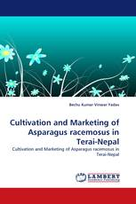 Cultivation and Marketing of Asparagus racemosus in Terai-Nepal
