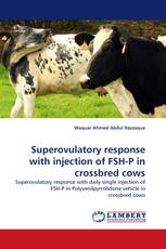 Superovulatory response with injection of FSH-P in crossbred cows