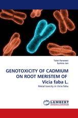 GENOTOXICITY OF CADMIUM ON ROOT MERISTEM OF  Vicia faba L.