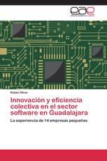 Innovación y eficiencia colectiva en el sector software en Guadalajara