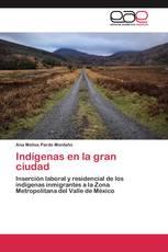 Indígenas en la gran ciudad