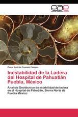Inestabilidad de la Ladera del Hospital de Pahuatlán Puebla, México